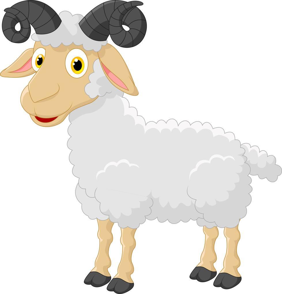 羊20213.jpg